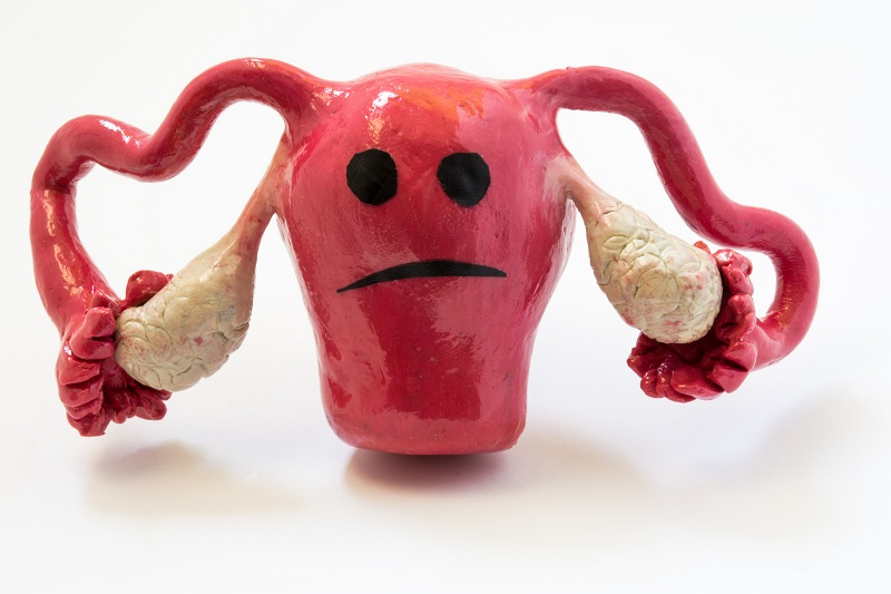 Women's Health Uterine Fibroids