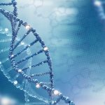 Womens Health Genetic Testing and Pregnancy